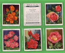 Tobacco cards set cigarette cards Roses 1936